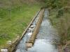 linne-vlootbeek-20120331073