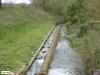 linne-vlootbeek-20120331074