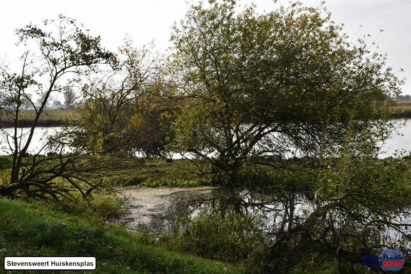 stevensweert-huiskensplas-20181020050