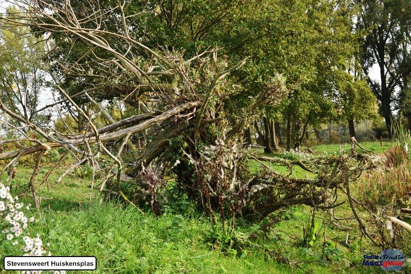 stevensweert-huiskensplas-20181020073