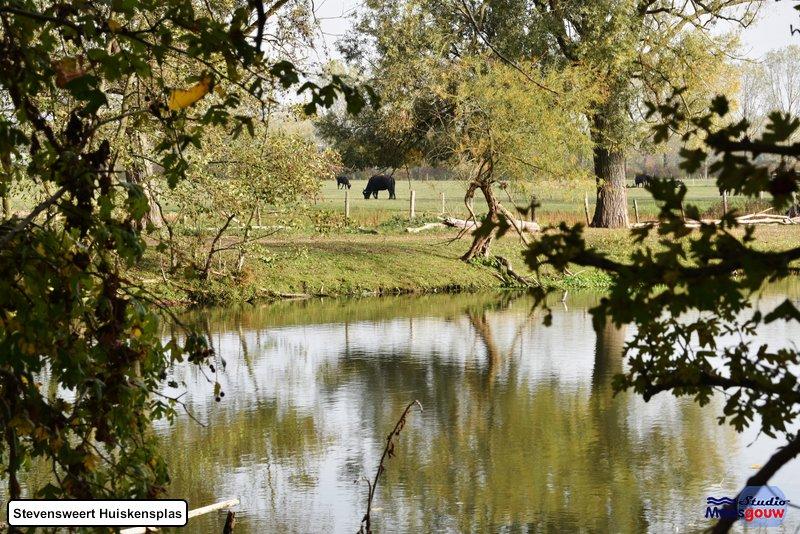 stevensweert-huiskensplas-20181020100